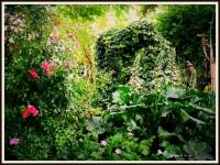 jardin seme